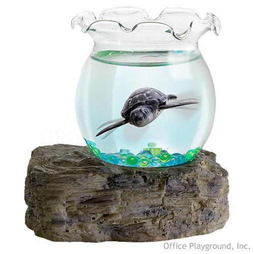 Regalos originales blog archive divertida tortuga para for Regalos oficina