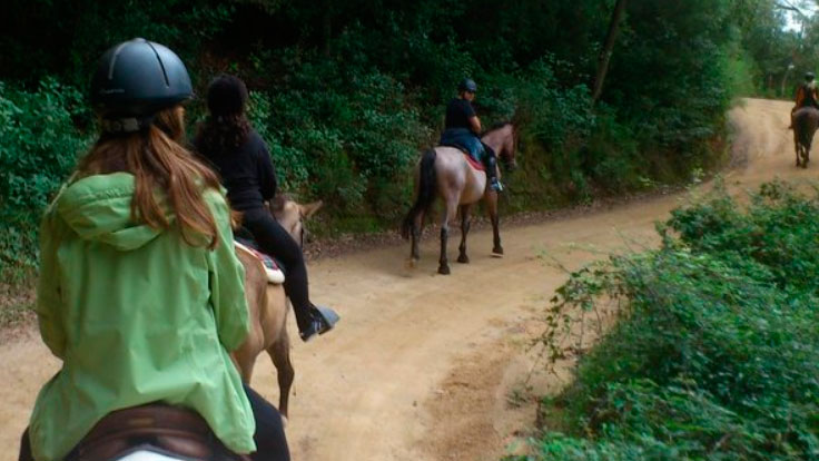 caballo-barcelona