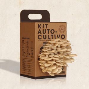 Kit-Autocultivo-de-setas-Resetea