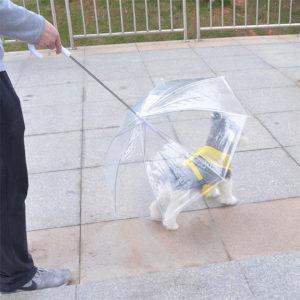 paraguas con correa para perros